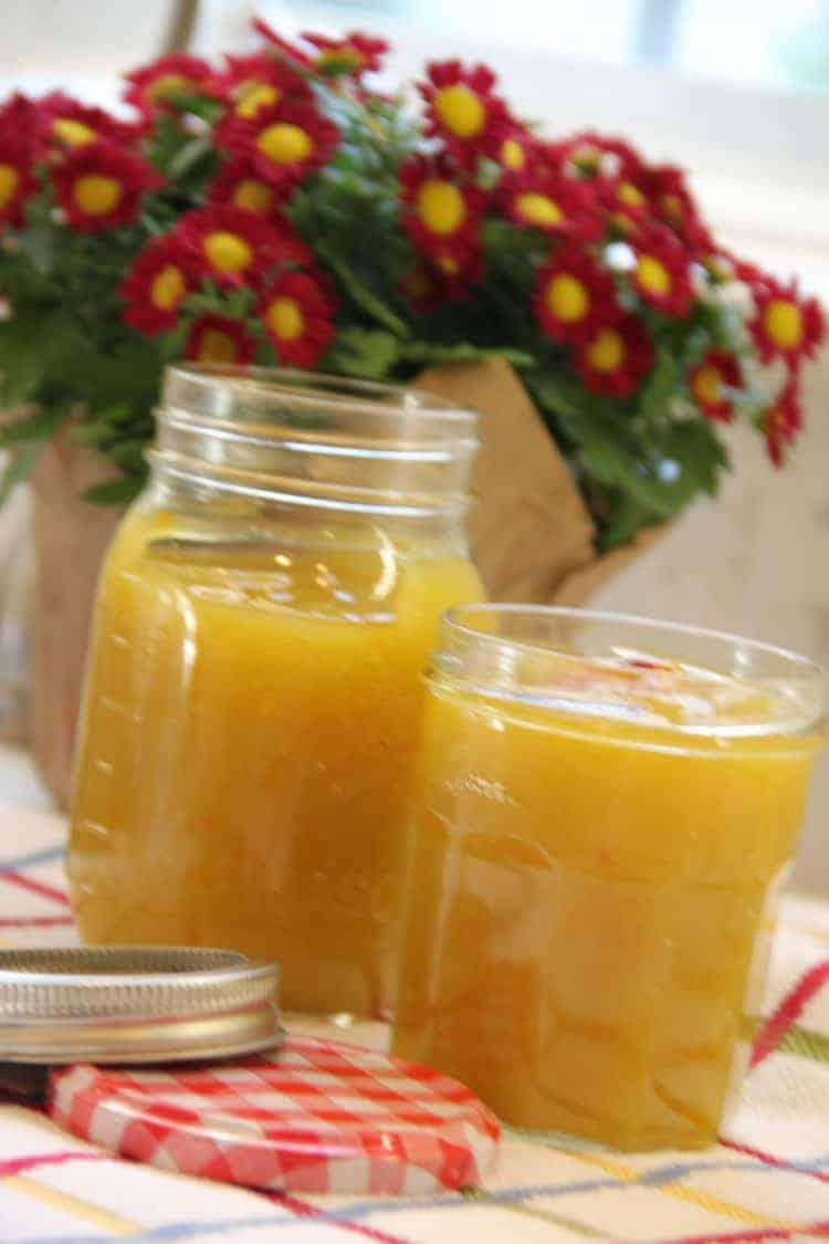 Raw Mango Drink/Kairee Panha