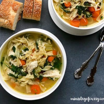 EASY Chicken Noodle Soup with Kale – Instant Pot