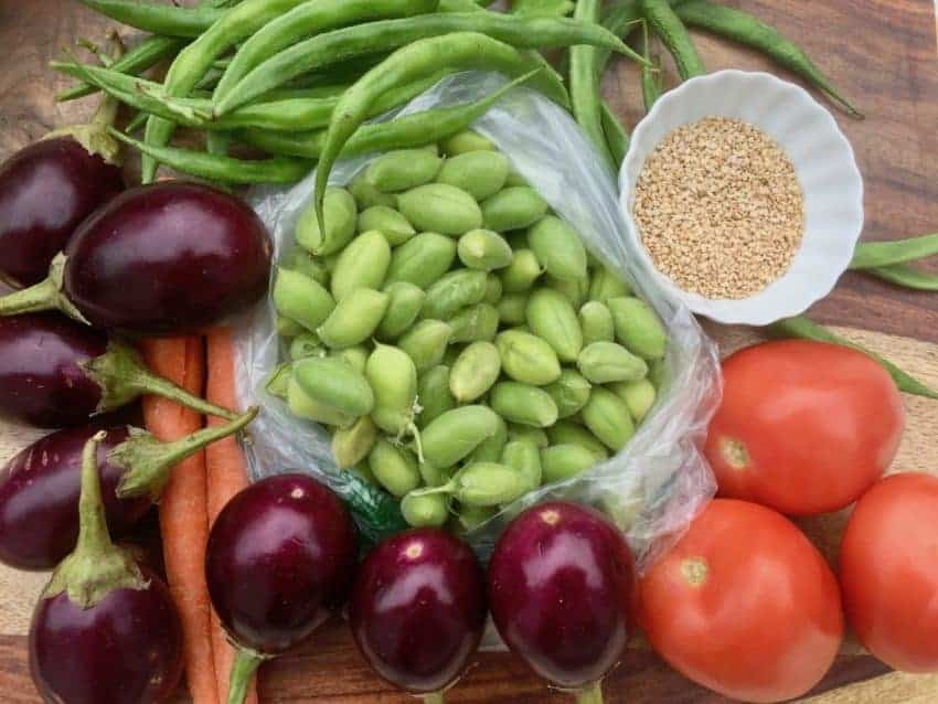 Baby eggplant, green chickpeas in pods, tomatoes, green beans and sesame seeds