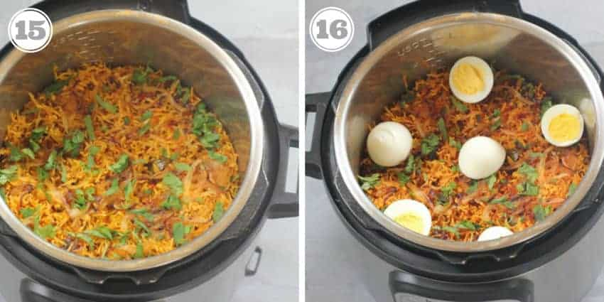 Chicken Biryani in Instant Pot