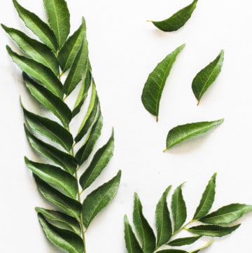 curry leaves and sprigs