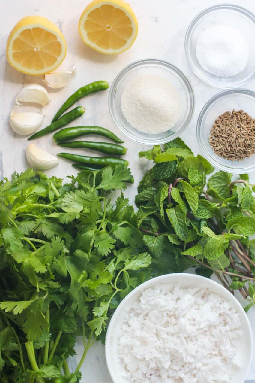 Ingredients for cilantro mint chutney