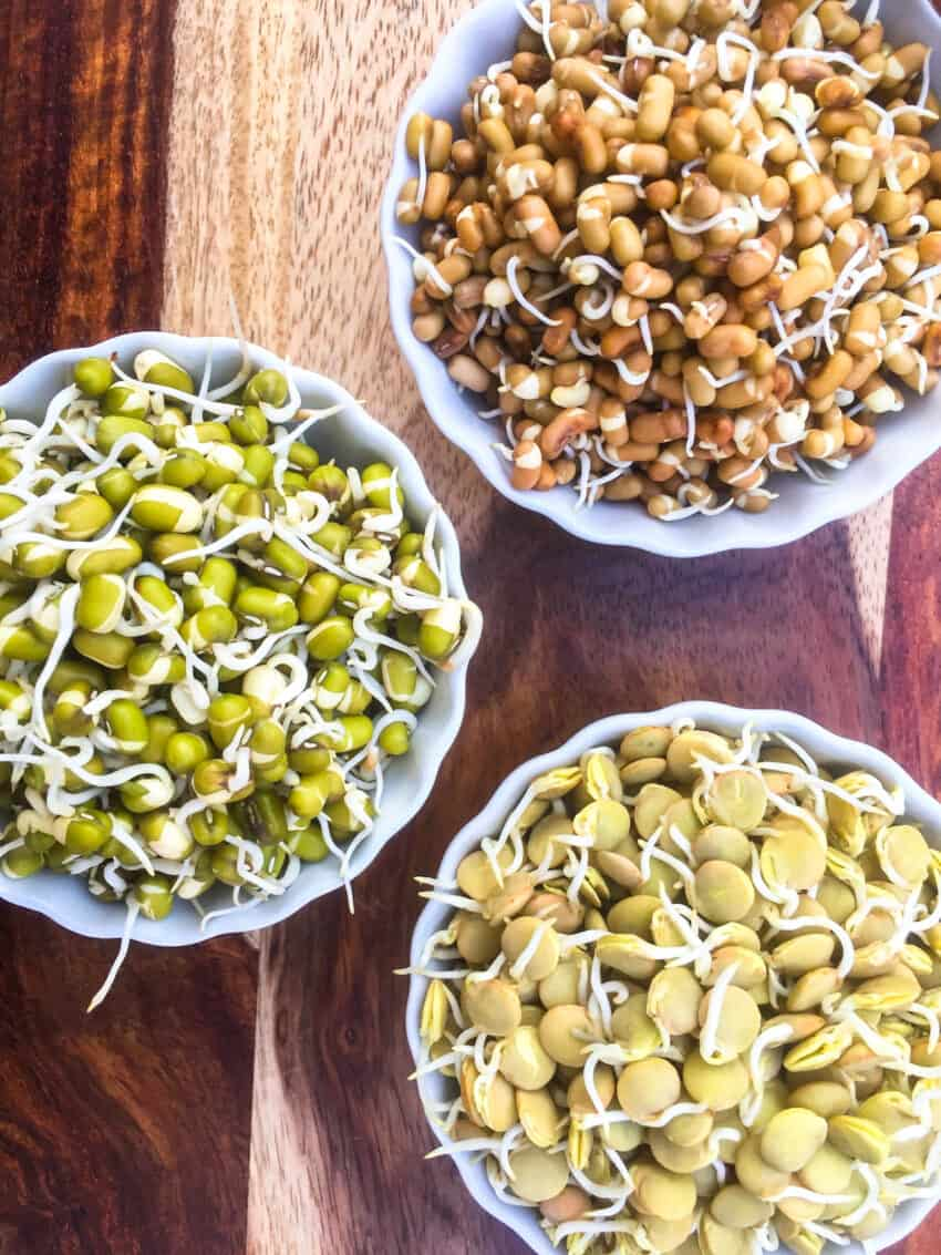 sprouted moth, masoor and mung beans in bowls