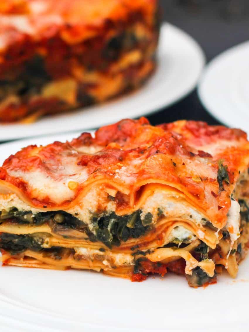 closeup photo of lasagna